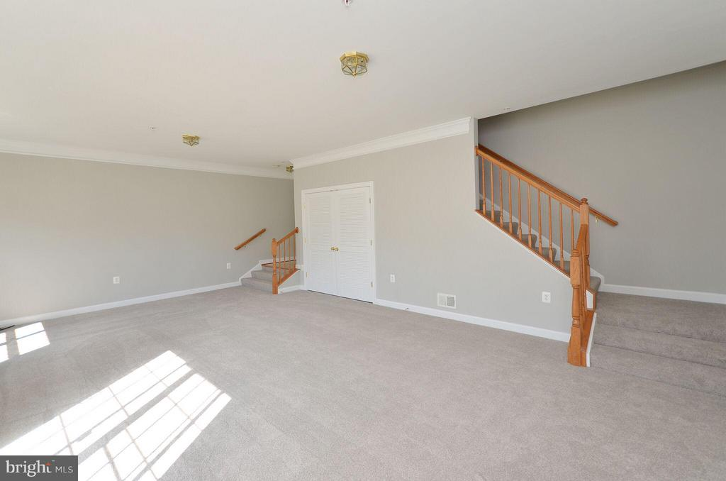 Spacious Basement with New Carpet - 13685 VENTURI LN #240, HERNDON