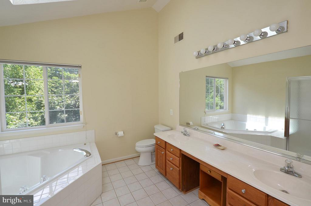 Master Bathroom with Dual Sinks - 20532 DEERWATCH PL, ASHBURN