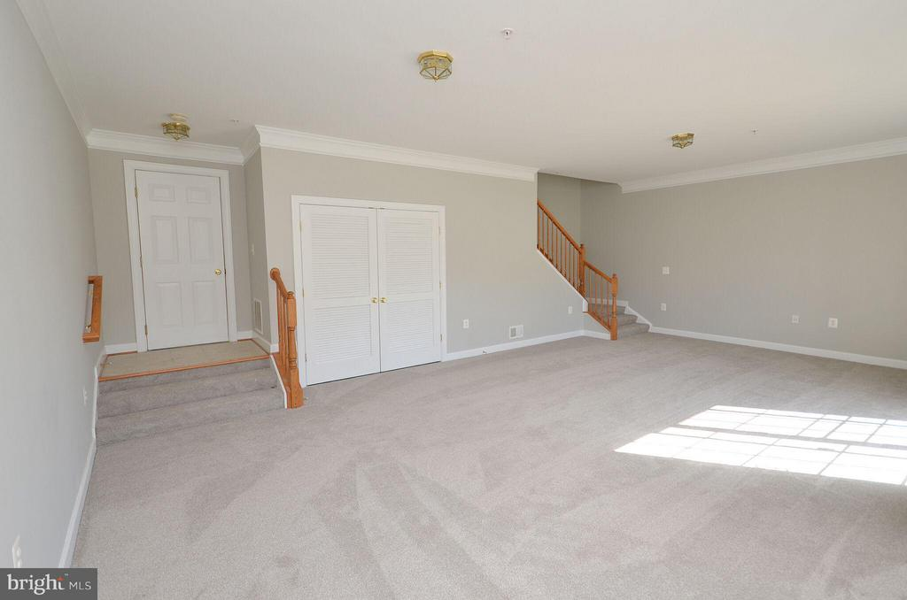 Spacious Basement Freshly Painted - 13685 VENTURI LN #240, HERNDON