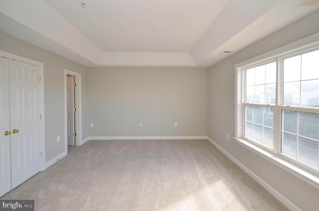 Master Bedroom w/ Tray Ceiling - 13685 VENTURI LN #240, HERNDON