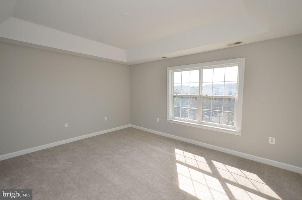 Freshly Painted Master Bedroom - 13685 VENTURI LN #240, HERNDON