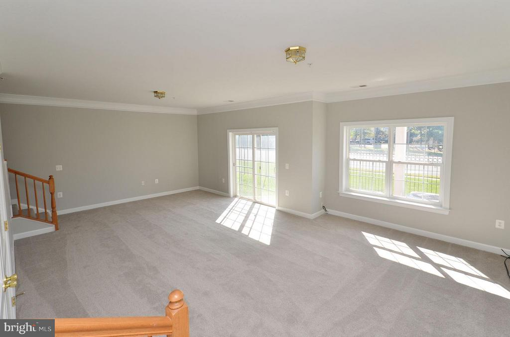 Walkout Level Basement - 13685 VENTURI LN #240, HERNDON