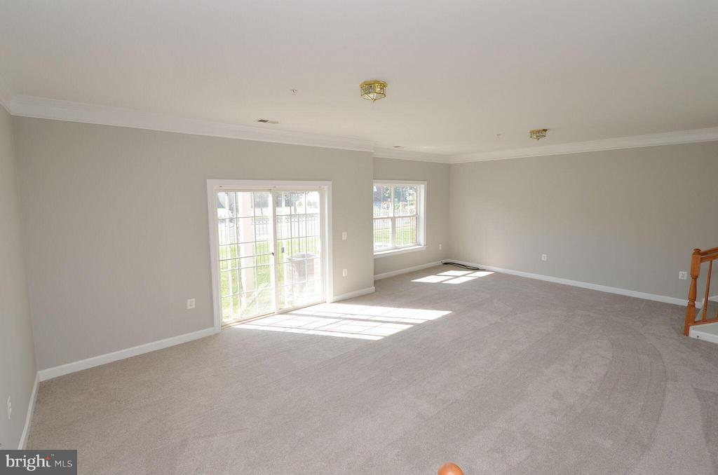 Great Natural Light in the Basement - 13685 VENTURI LN #240, HERNDON
