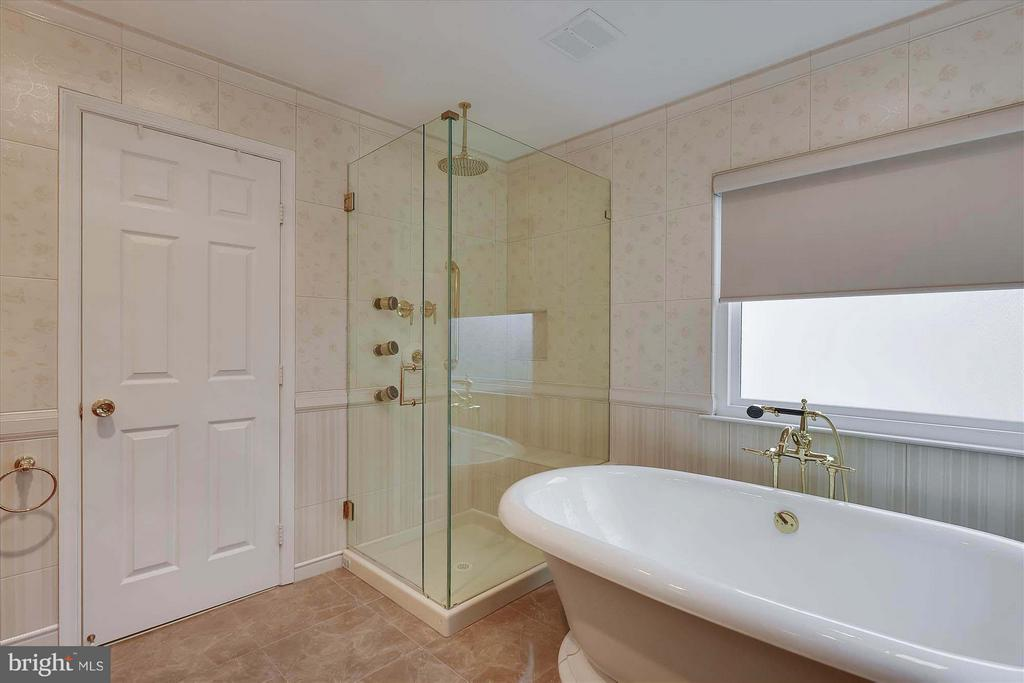 Freestand tub, frameless shower, multi showerheads - 43154 PARKERS RIDGE DR, LEESBURG