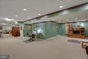 Large lower level can be segmented - 43154 PARKERS RIDGE DR, LEESBURG