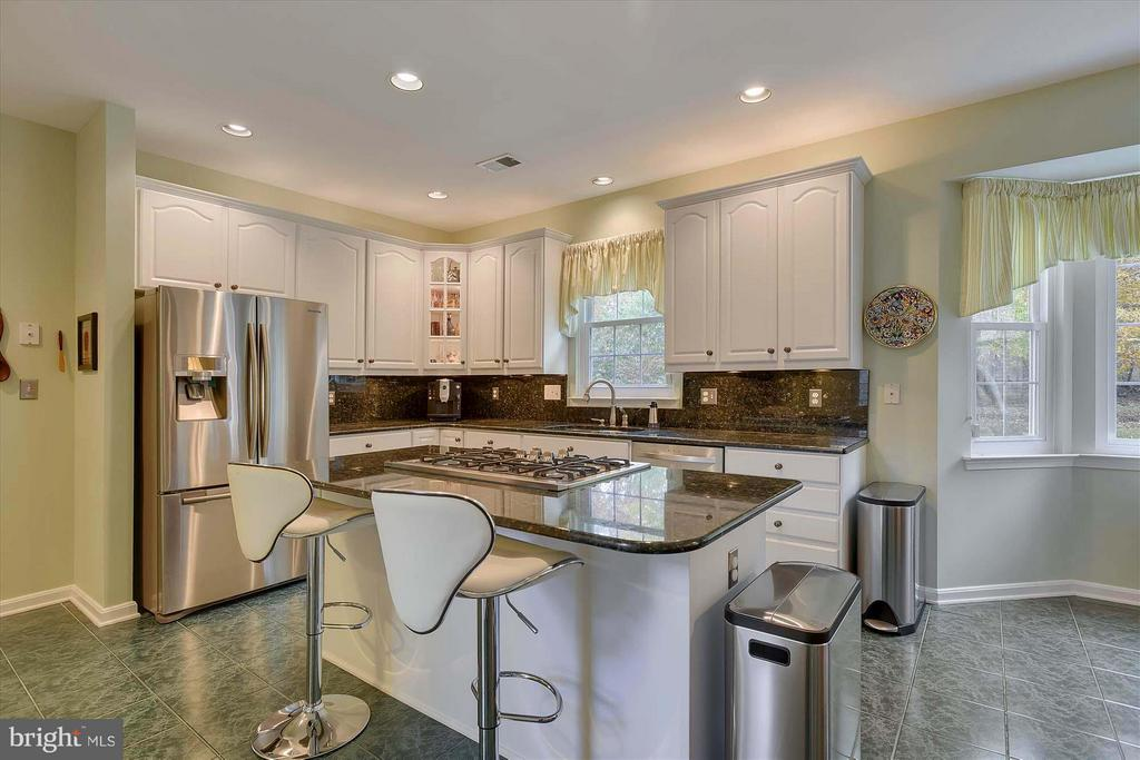 Fully updated and upgraded Kitchen! - 43154 PARKERS RIDGE DR, LEESBURG