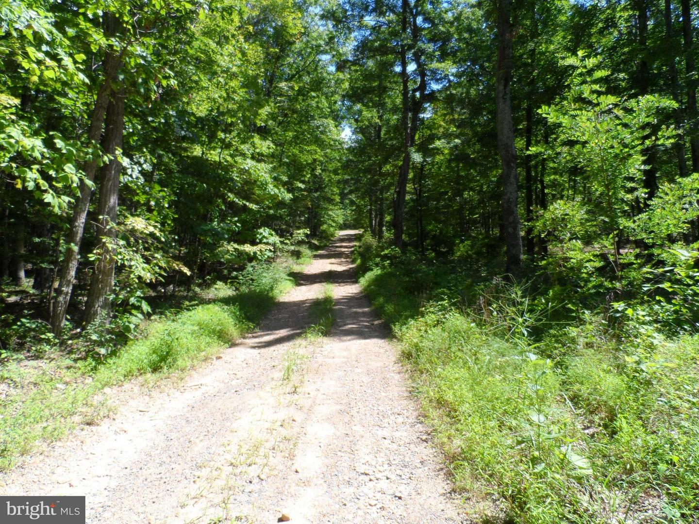 Land for Sale at Hunters Rd Gore, Virginia 22637 United States