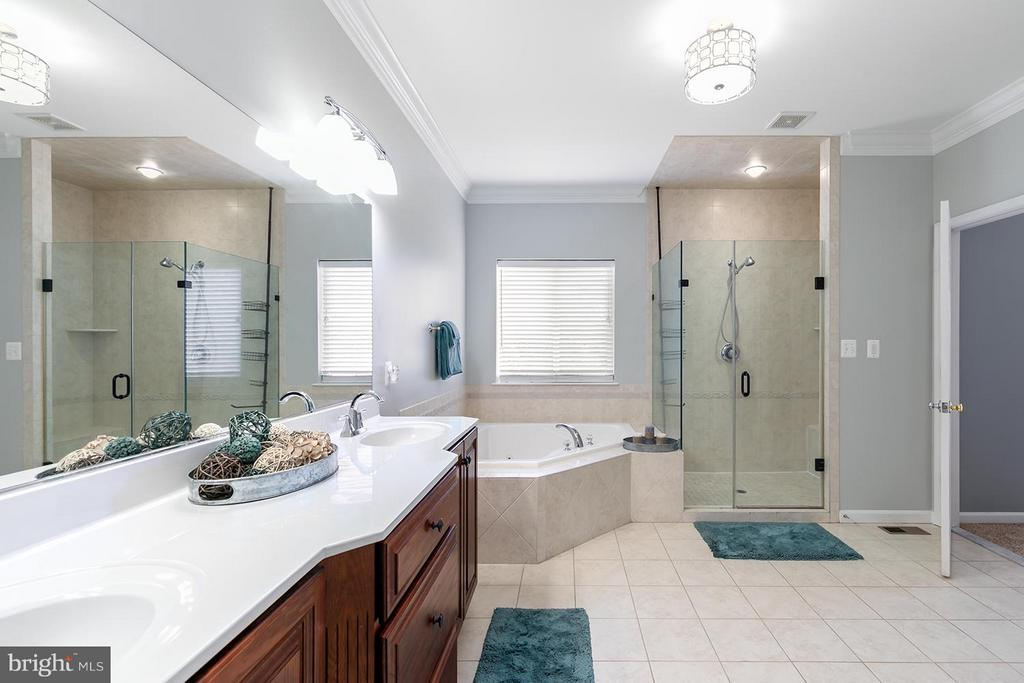 Bath (Master) - 40727 LOVETTSVILLE RD, LOVETTSVILLE