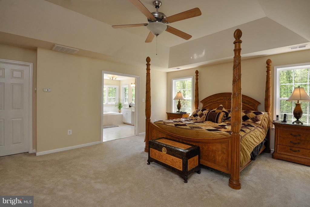 Bedroom (Master) - 11300 HONOR BRIDGE FARM CT, SPOTSYLVANIA