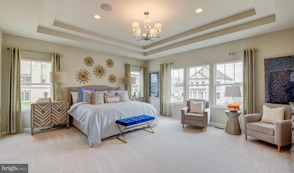 Bedroom (Master) w/ Opt. Ceiling Treatment - 0 BOXELDER DR, STAFFORD