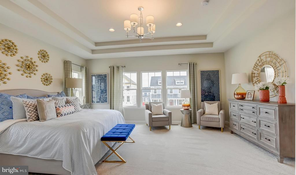 Bedroom (Master) w/ Optional Ceiling Treatment - 0 BOXELDER DR, STAFFORD