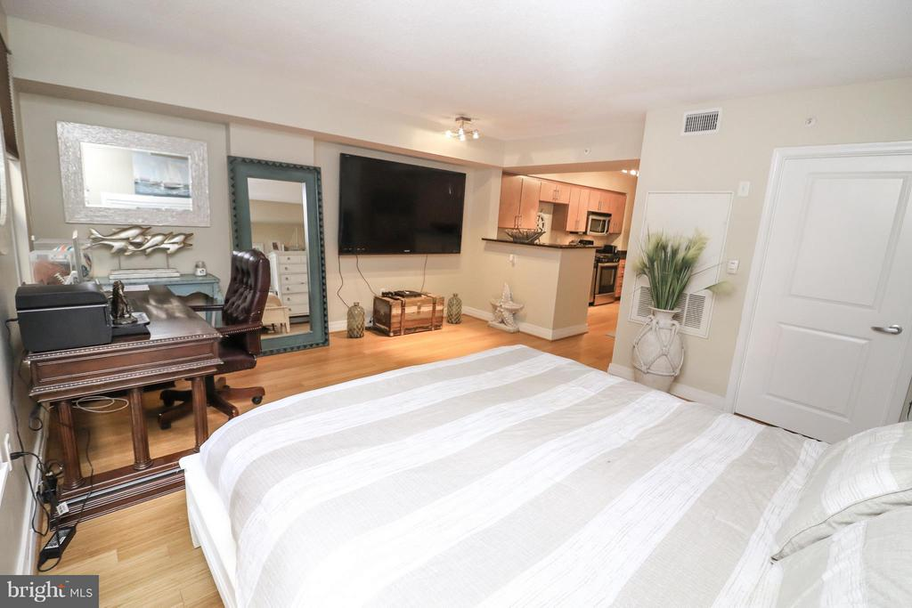 Spacious studio - 915 E ST NW #306, WASHINGTON