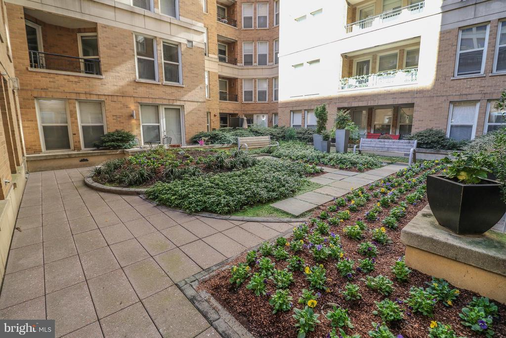 Beautifully landscaped garden area to enjoy - 915 E ST NW #306, WASHINGTON