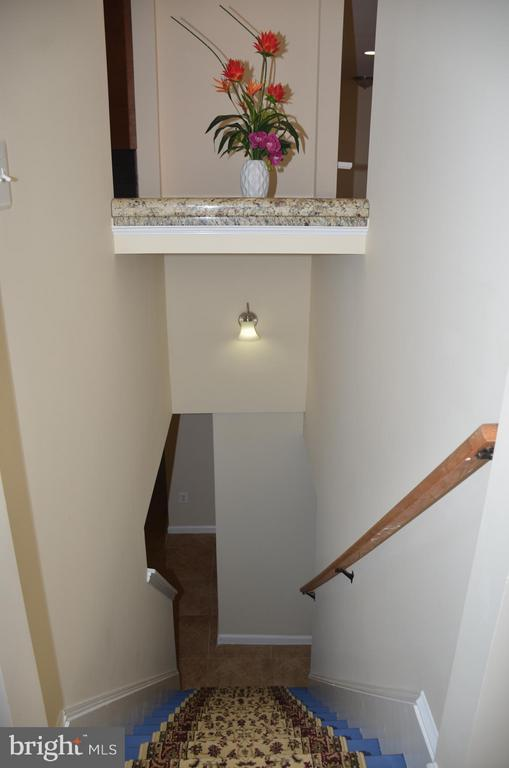 Stairs to basement - 7412 BRADDOCK RD, ANNANDALE