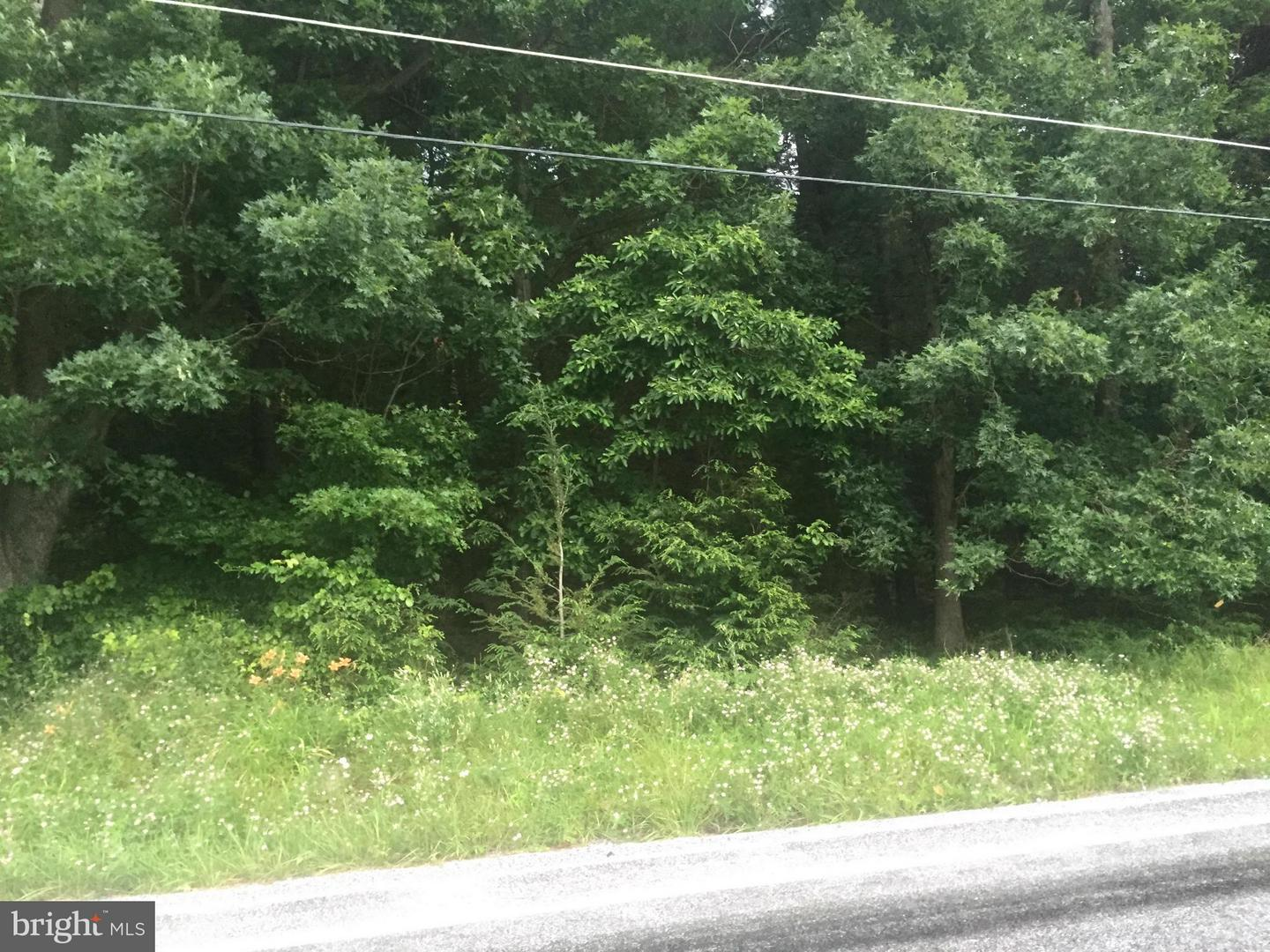 Additional photo for property listing at 155 Buchanan Valley Rd  Orrtanna, Pennsylvania 17353 United States