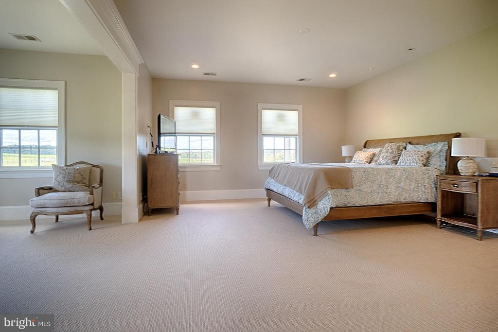 Bedroom (Master) - 42779 TRAVELERS RUN LN, LEESBURG