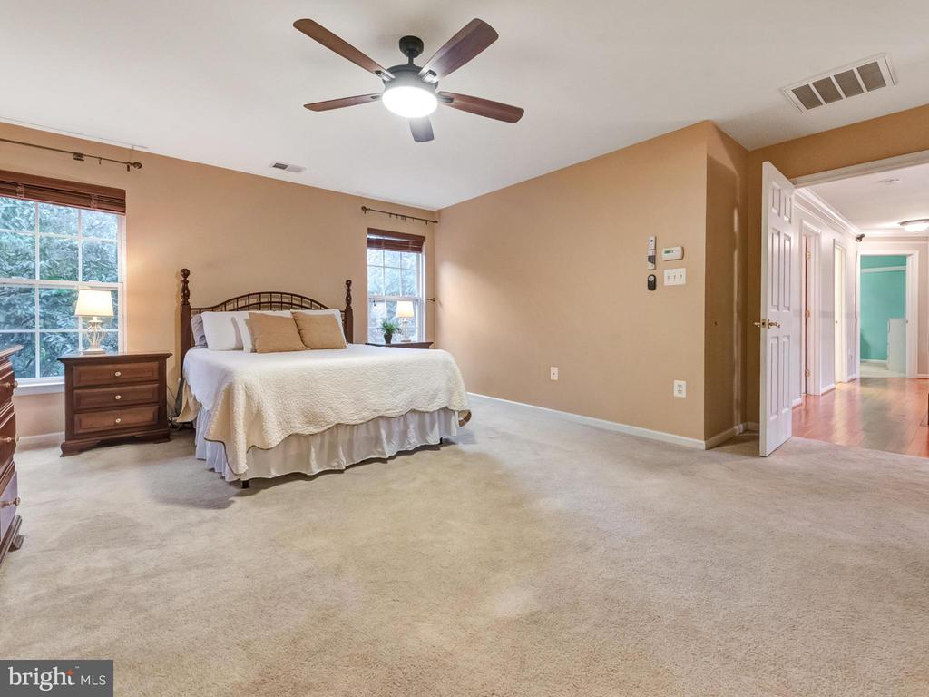 Master bedroom w/light-filled walk in closet. - 9038 CLENDENIN WAY, FREDERICK