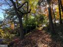 Beautiful path behind home leads to cute shops! - 2146 POLLARD ST N, ARLINGTON