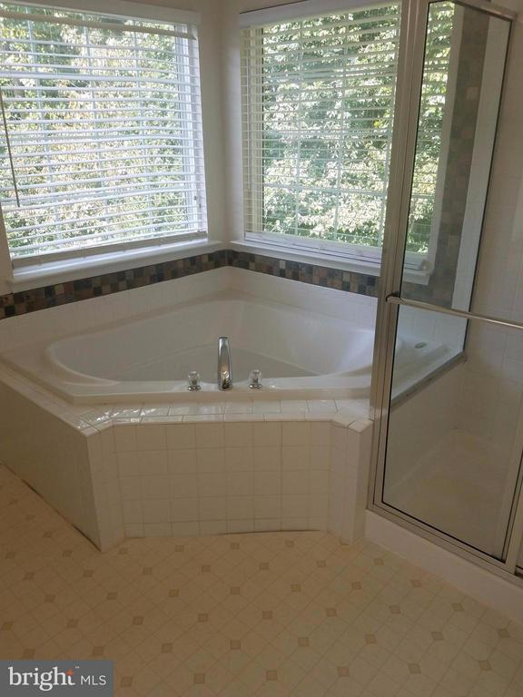 Bath (Master) - 15705 BACONS CASTLE CT, WOODBRIDGE