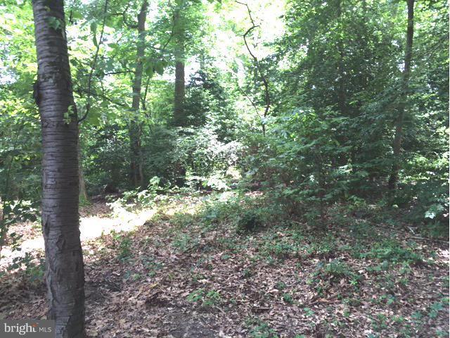 Photo of home for sale at Nicotine Trail, Lorton VA