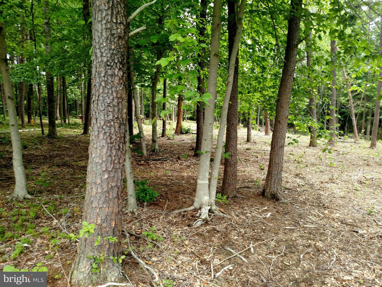 Photo of home for sale at 20 Megan Way, Bumpass VA