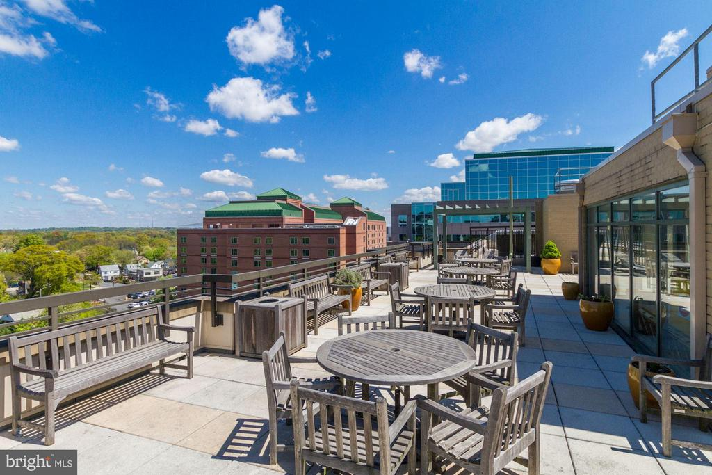 The Monroe - Rooftop Terrace - 3625 10TH ST N #505, ARLINGTON