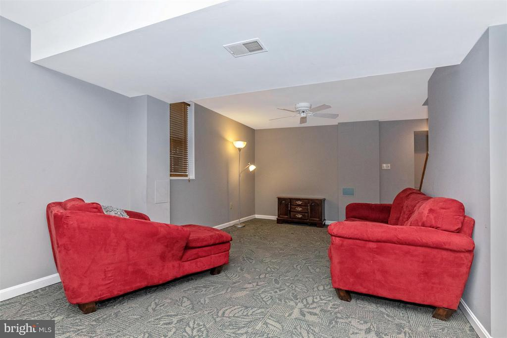 Basement-Rec Room - 6045 DOUGLAS AVE, NEW MARKET