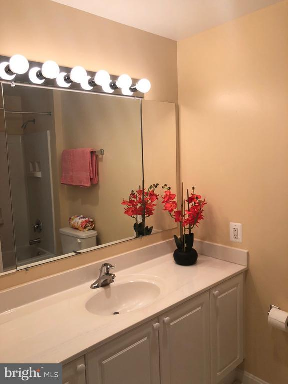 Well appointed baths - 19365 CYPRESS RIDGE TER #216, LEESBURG