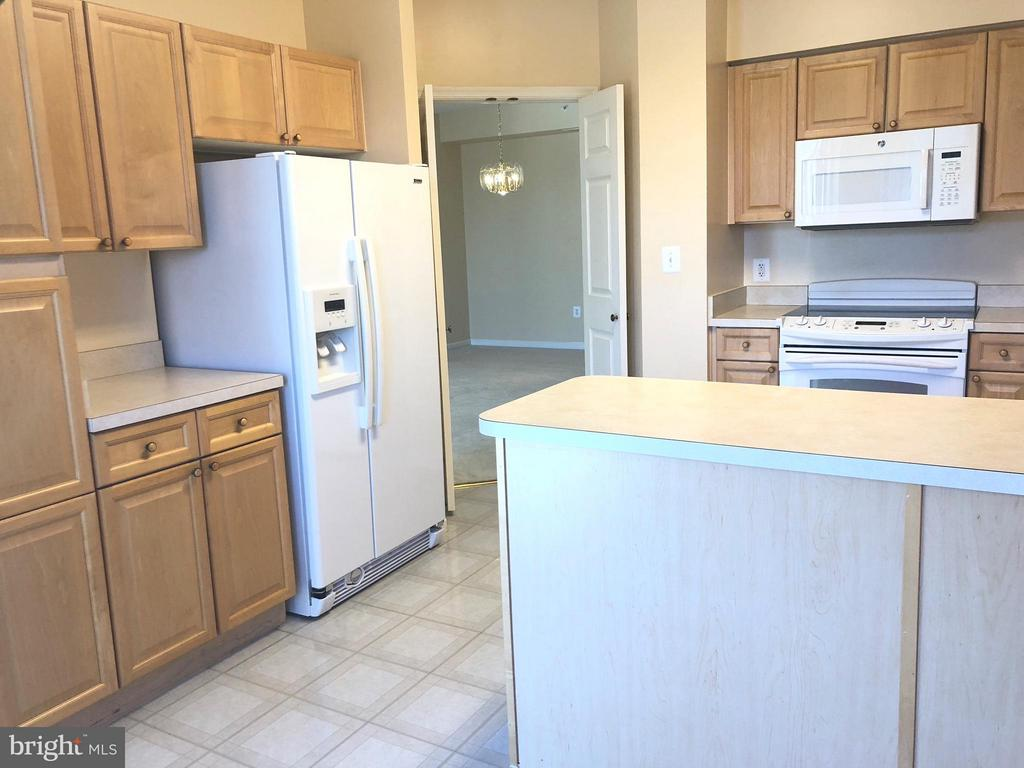 Spacious Sunny Kitchen w/ ample cabinets - 19365 CYPRESS RIDGE TER #216, LEESBURG