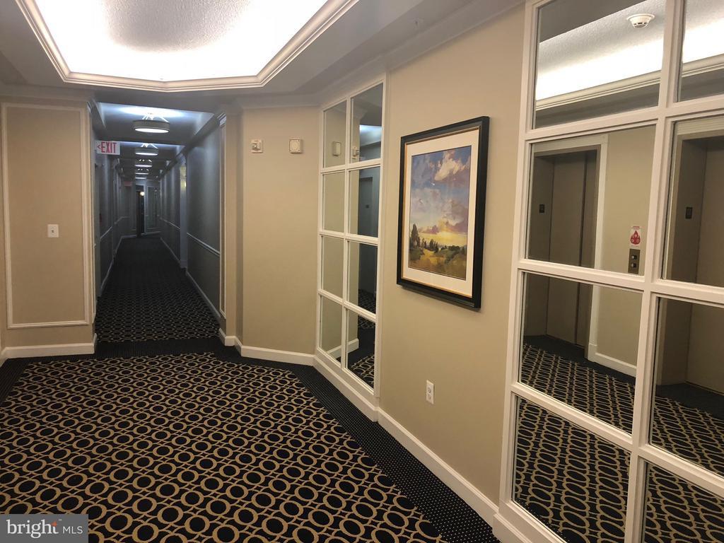 Beautiful Hallways and Elevator Hall - 19365 CYPRESS RIDGE TER #216, LEESBURG