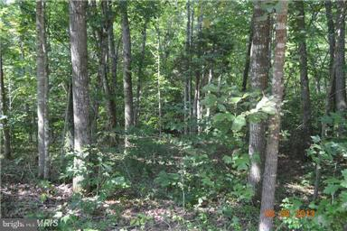 Land for Sale at 29459 Old Office Rd Rhoadesville, Virginia 22542 United States