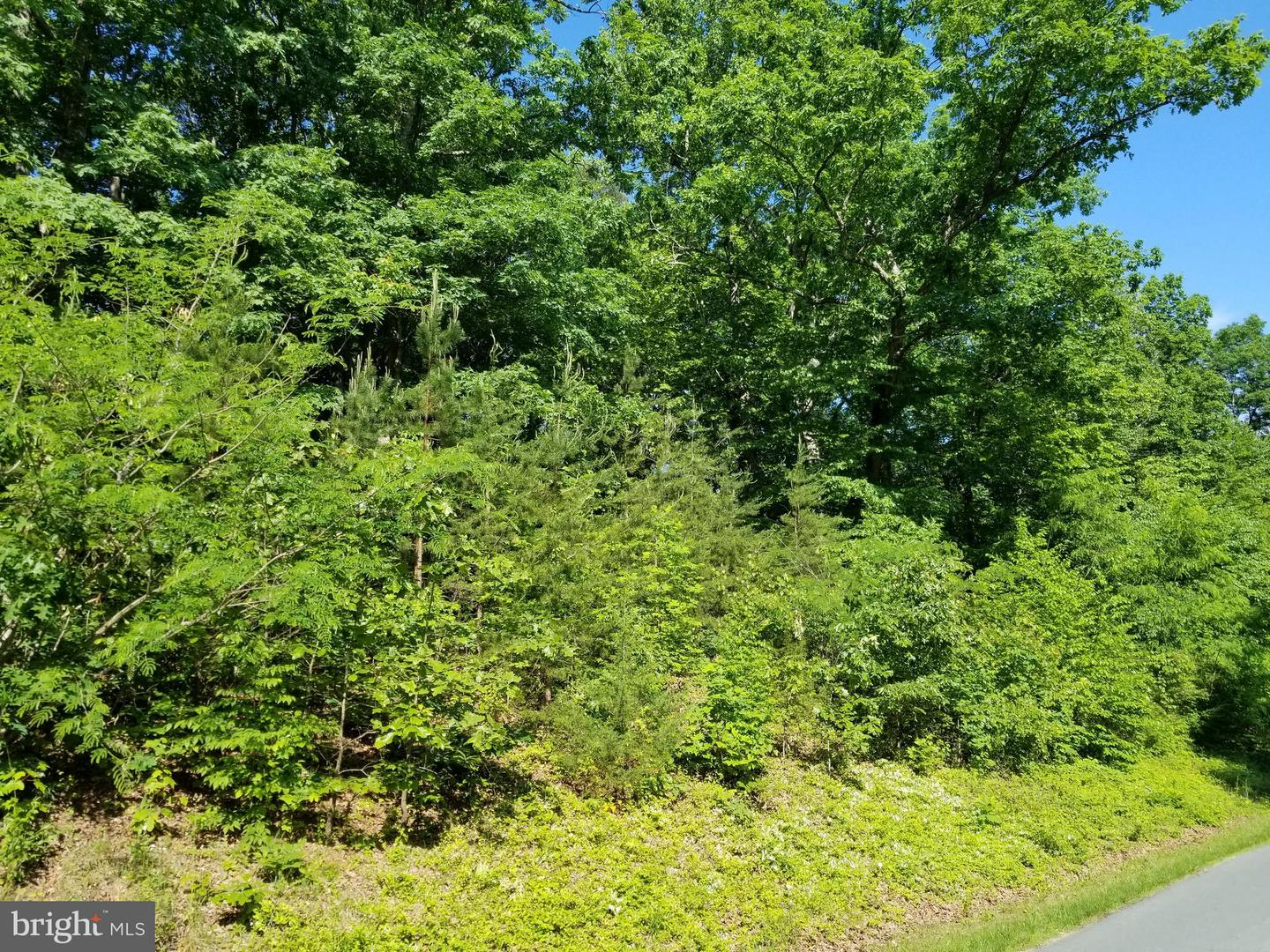 Land for Sale at Fray's Mill Rd Brightwood, Virginia 22715 United States