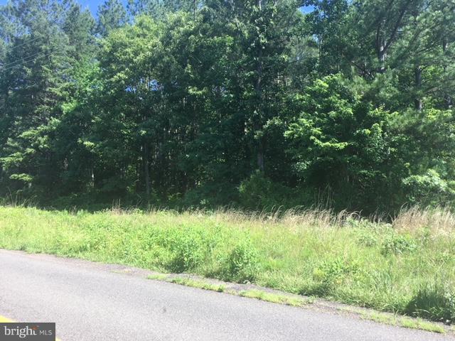 Land for Sale at Eleys Ford Road Lignum, Virginia 22726 United States