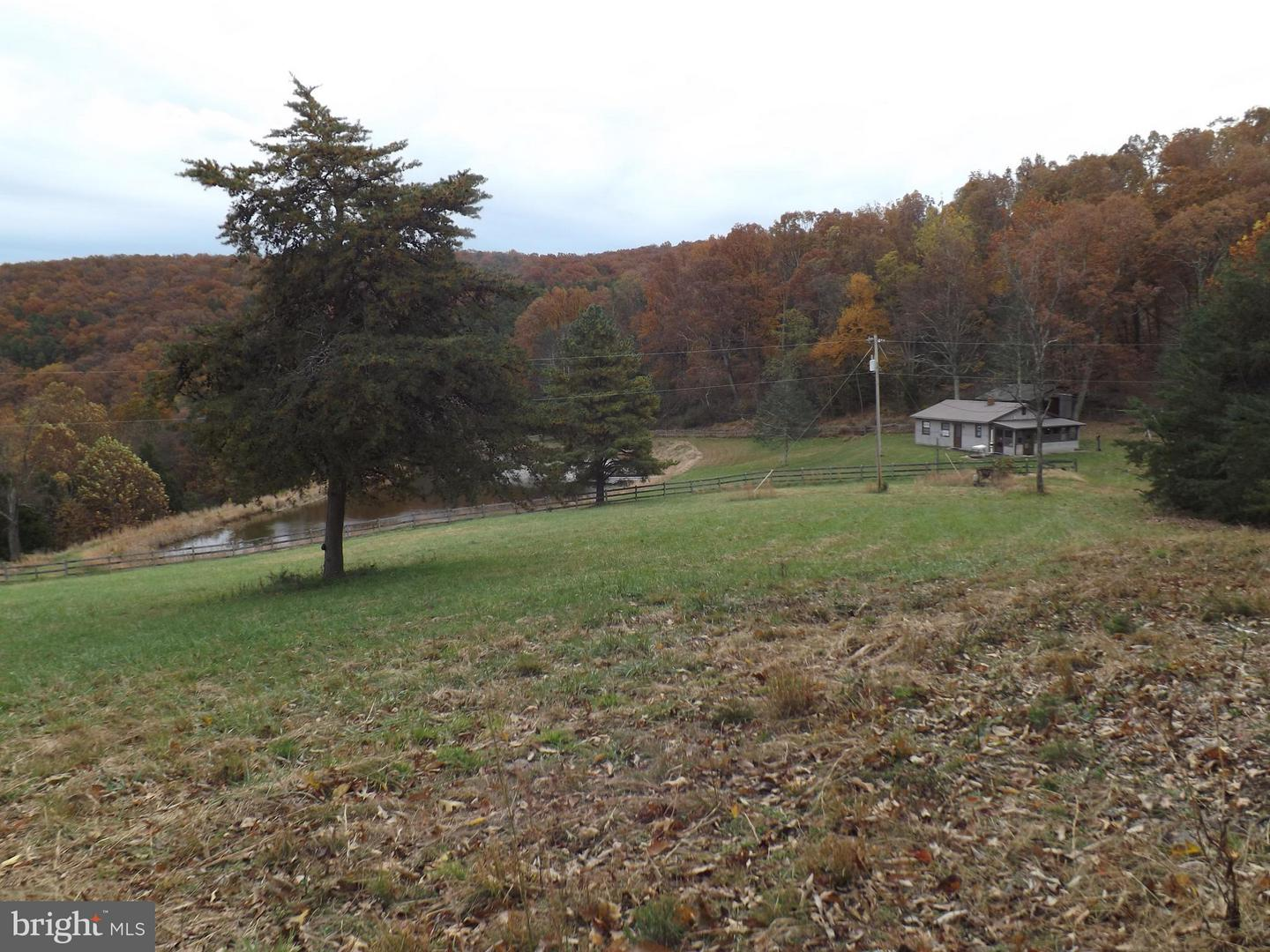 Land for Sale at 1954 Roy Hyre Hollow Rd Petersburg, West Virginia 26847 United States
