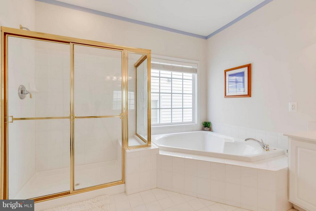 Master Bath with separate Shower - 23359 RAINBOW ARCH DR, CLARKSBURG