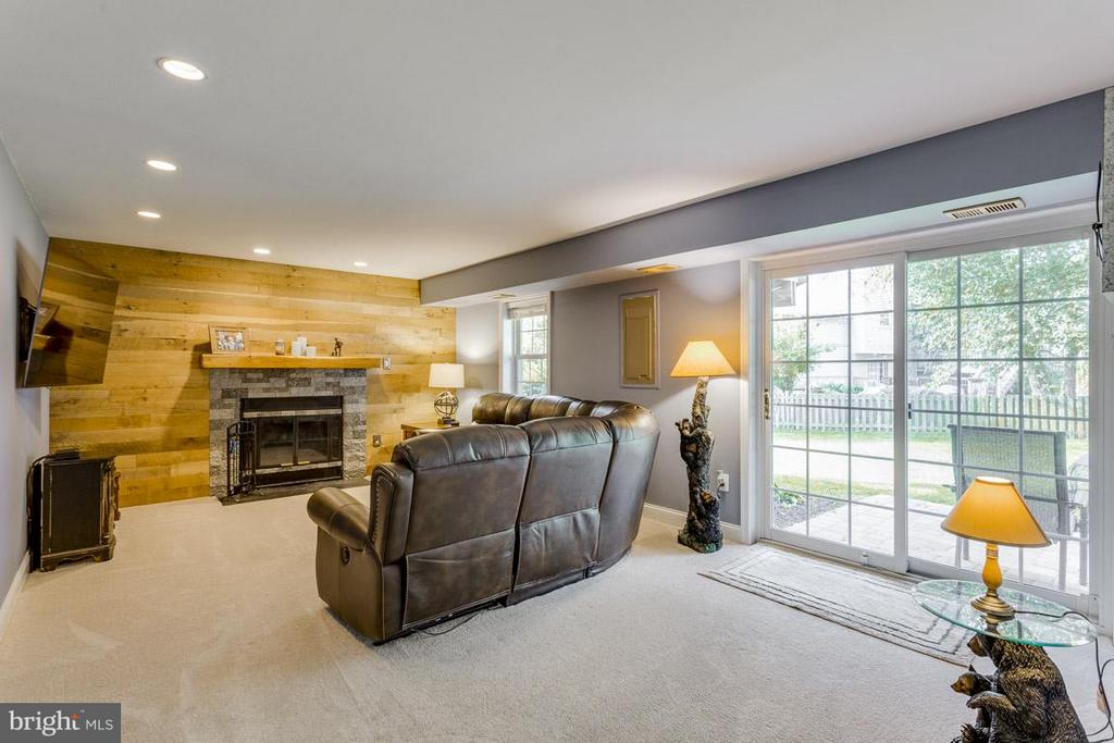 Family room with patio access and natural light - 4338 CUB RUN RD, CHANTILLY