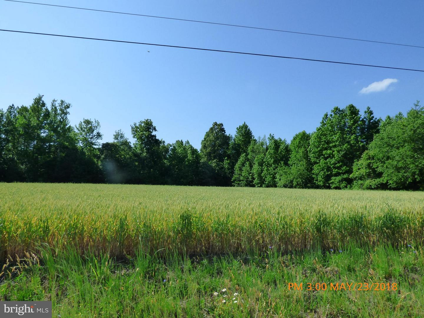 Land for Sale at Lot 15 Kinsale Creek Rd Kinsale, Virginia 22488 United States
