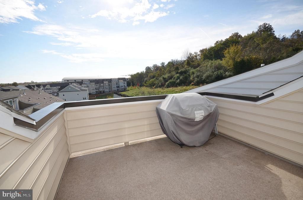 Rooftop Terrace Perfect for outdoor Entertainment - 19959 MAJOR SQ, ASHBURN