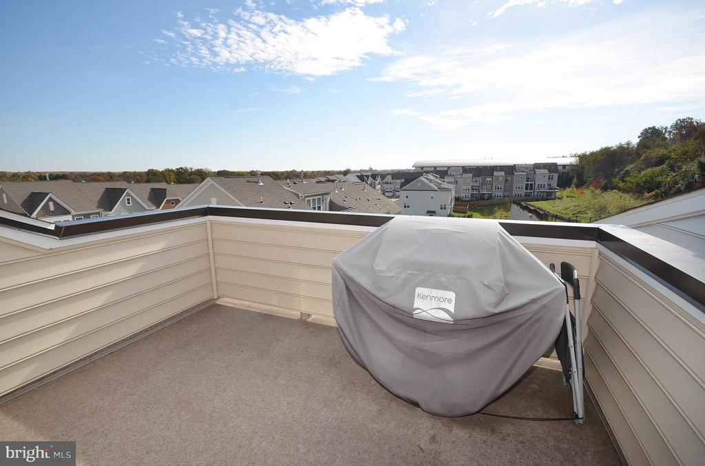 Rooftop Terrace Perfect to Grill and Chill - 19959 MAJOR SQ, ASHBURN
