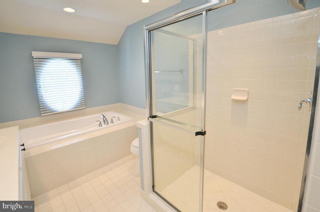 Master Bath with Separate Shower - 23382 HIGBEE LN, ASHBURN