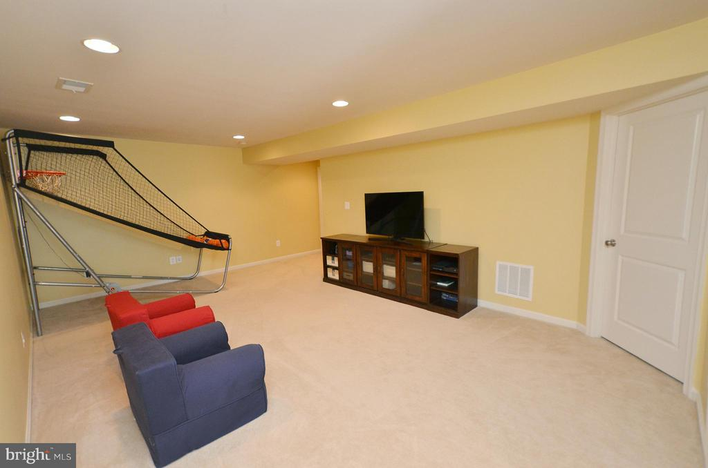 Large Basement with Plenty of Storage - 23382 HIGBEE LN, ASHBURN