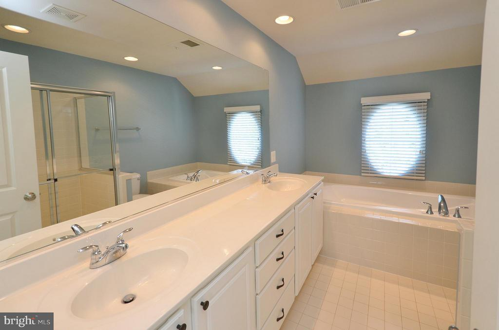 Master Bath with Soaking Tub - 23382 HIGBEE LN, ASHBURN
