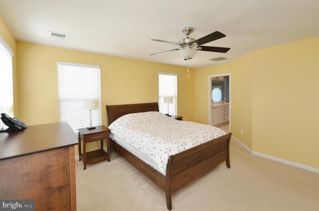Great Master Bedroom with Walk-in Closet - 23382 HIGBEE LN, ASHBURN