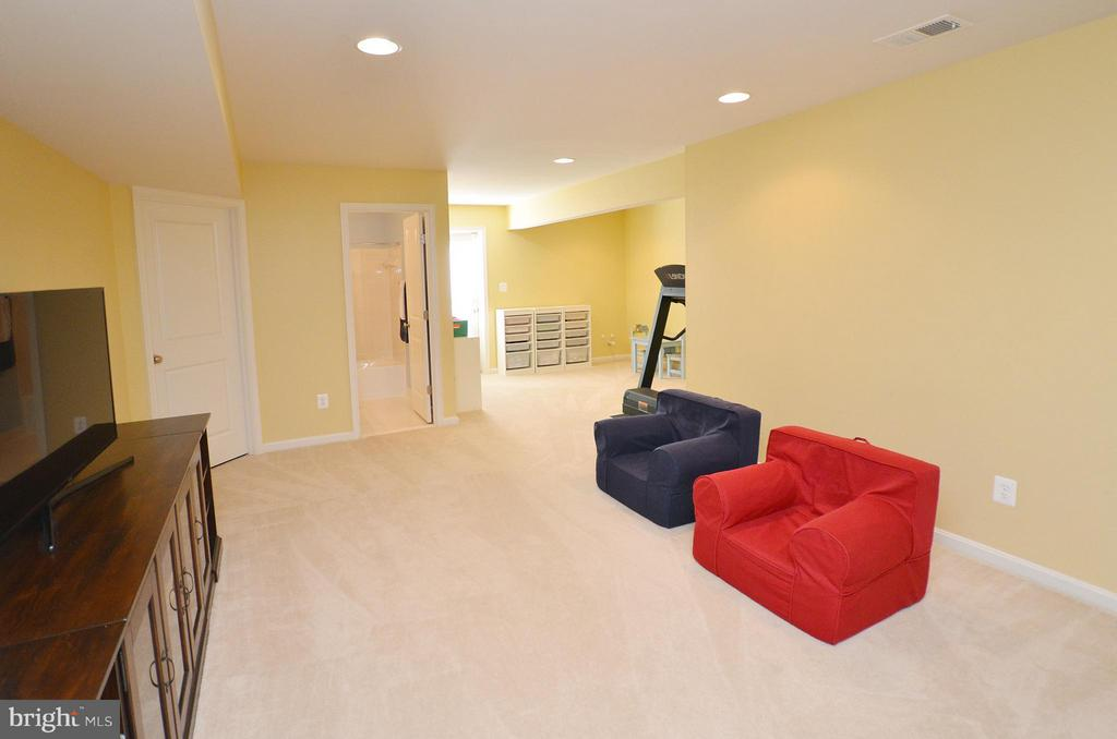 Walk up Level Basement - 23382 HIGBEE LN, ASHBURN