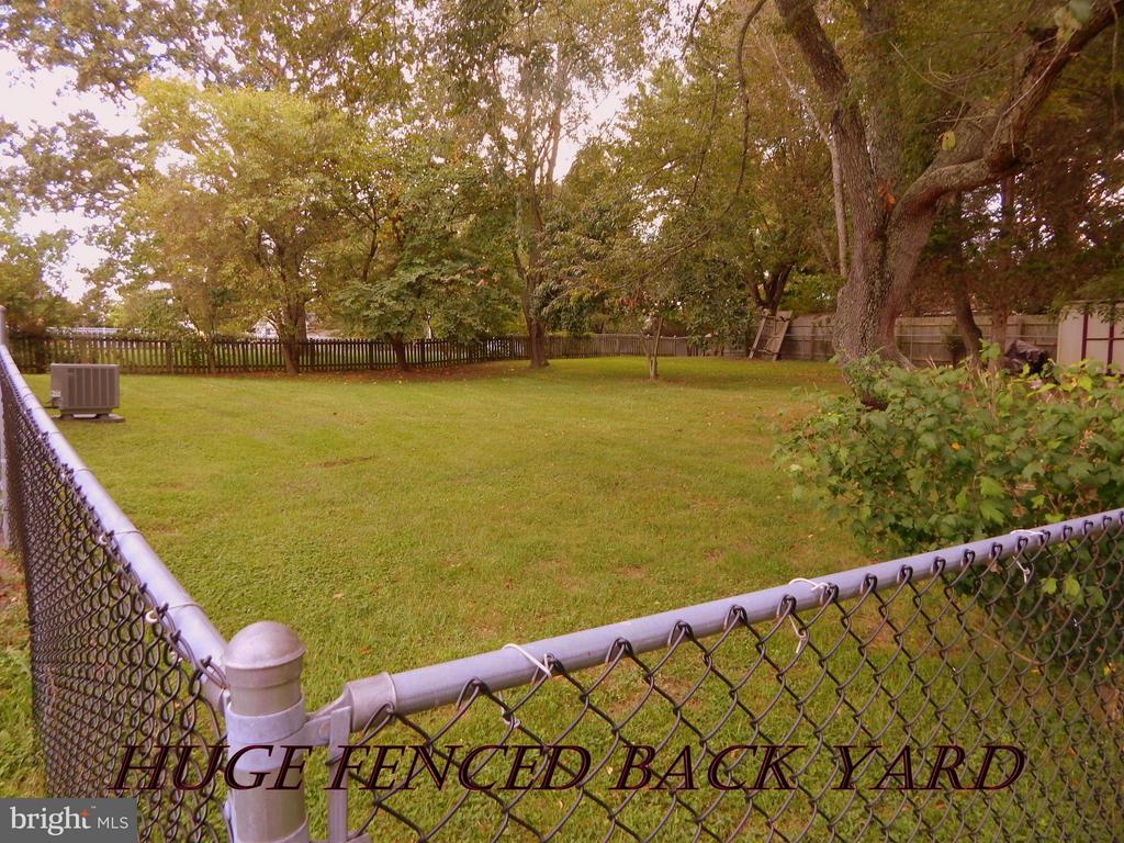 Large fenced back yard w/mature trees & shed. - 11604 BRIAN DR, FREDERICKSBURG