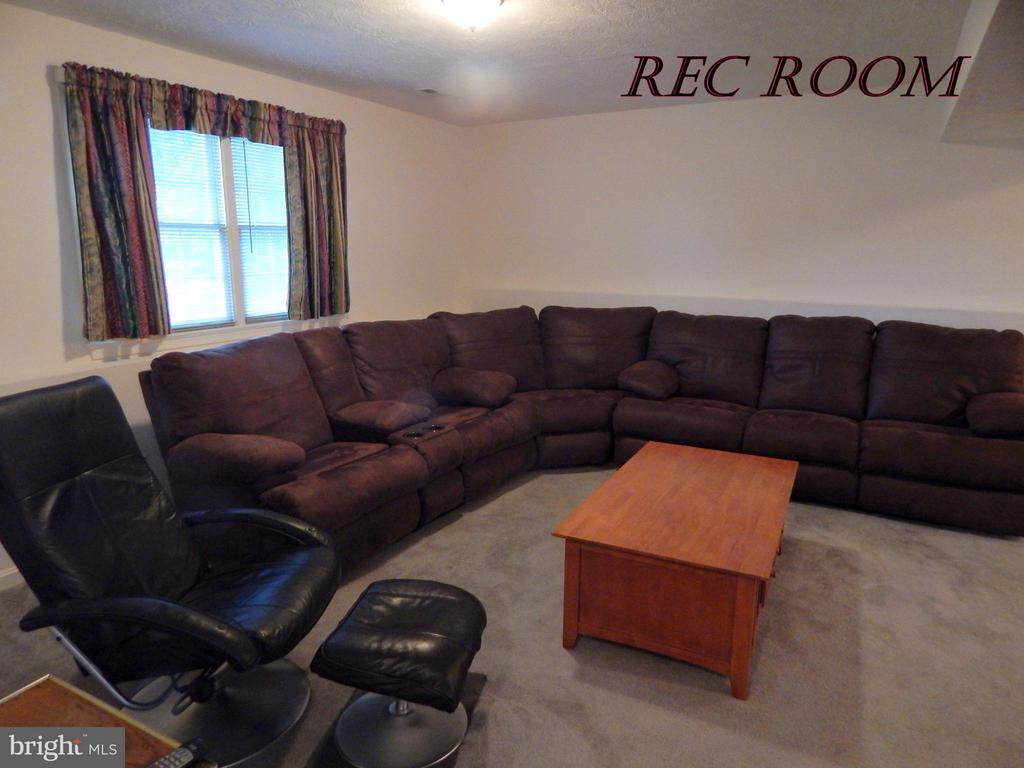 Basement REC RM with tons of space for seating. - 11604 BRIAN DR, FREDERICKSBURG