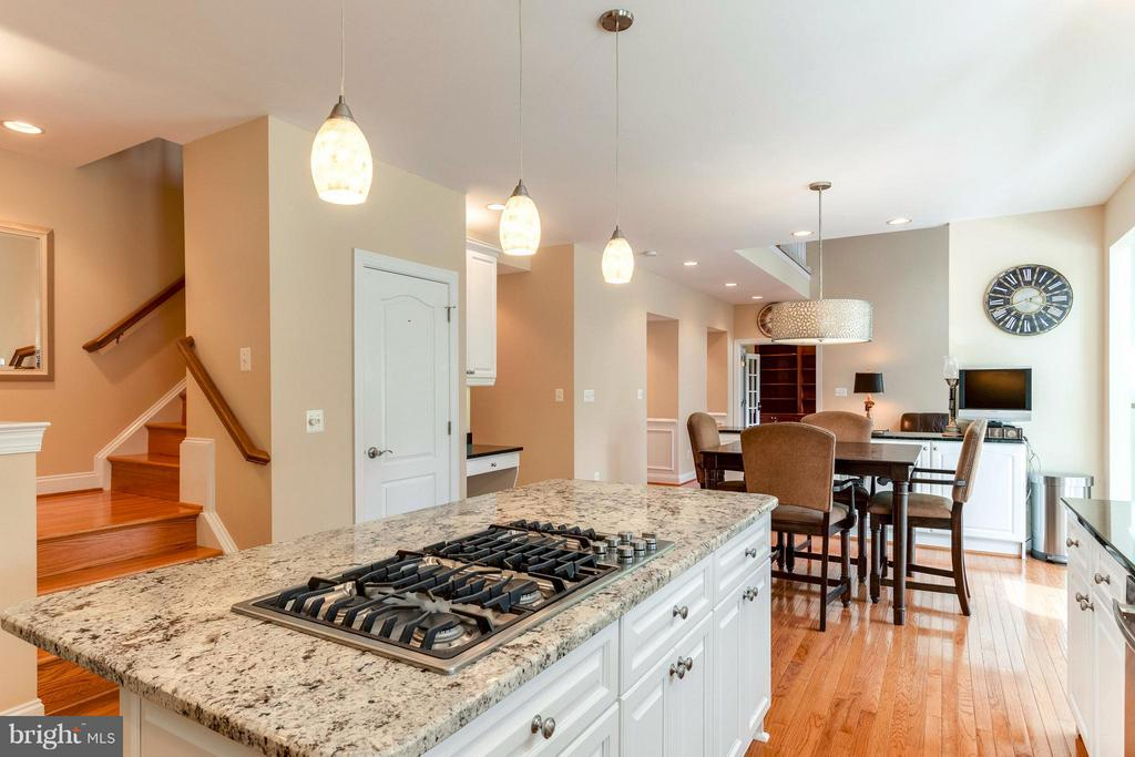 Open Kitchen, Ideal For Entertaining - 19917 INTERLACHEN CIR, ASHBURN