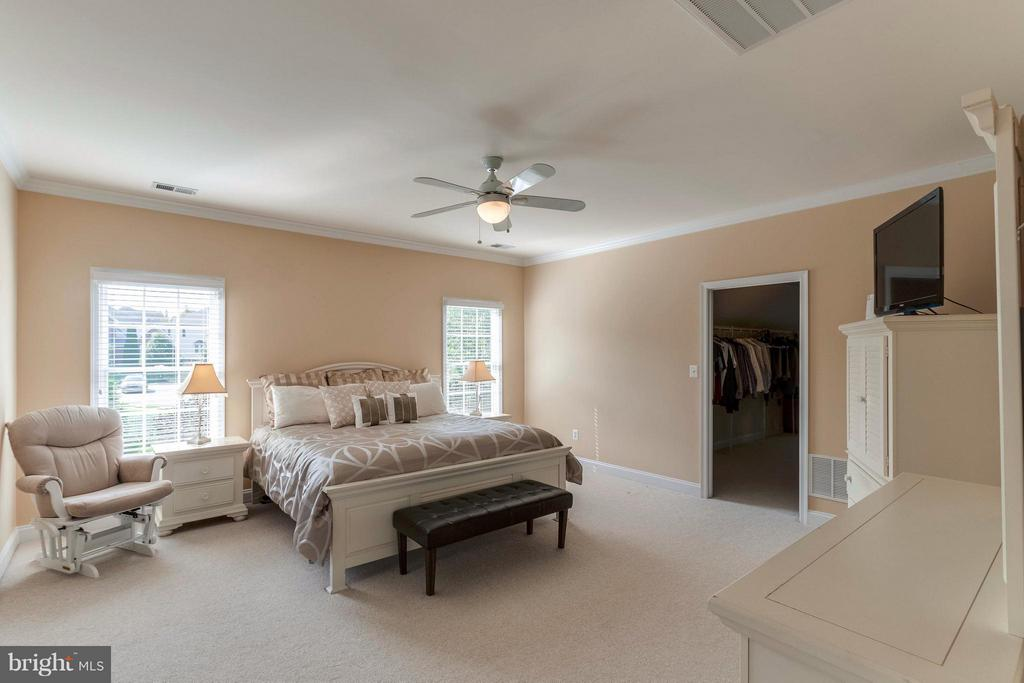 Sun Filled Master Bedroom w/ HUGE Walk-in Closet - 19917 INTERLACHEN CIR, ASHBURN
