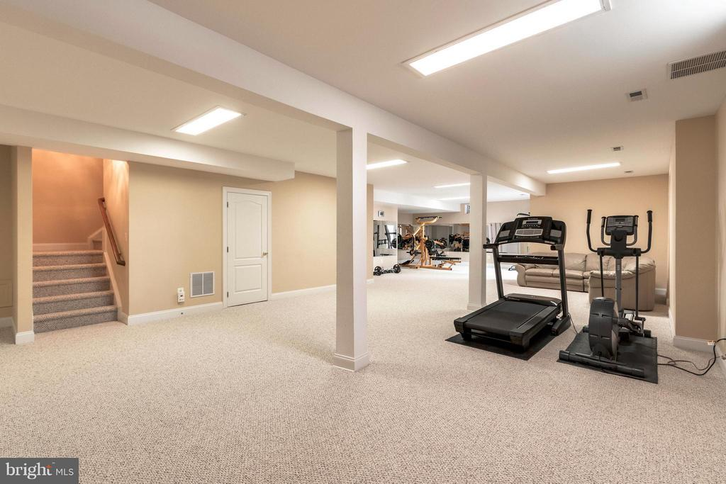 Basement - 19917 INTERLACHEN CIR, ASHBURN