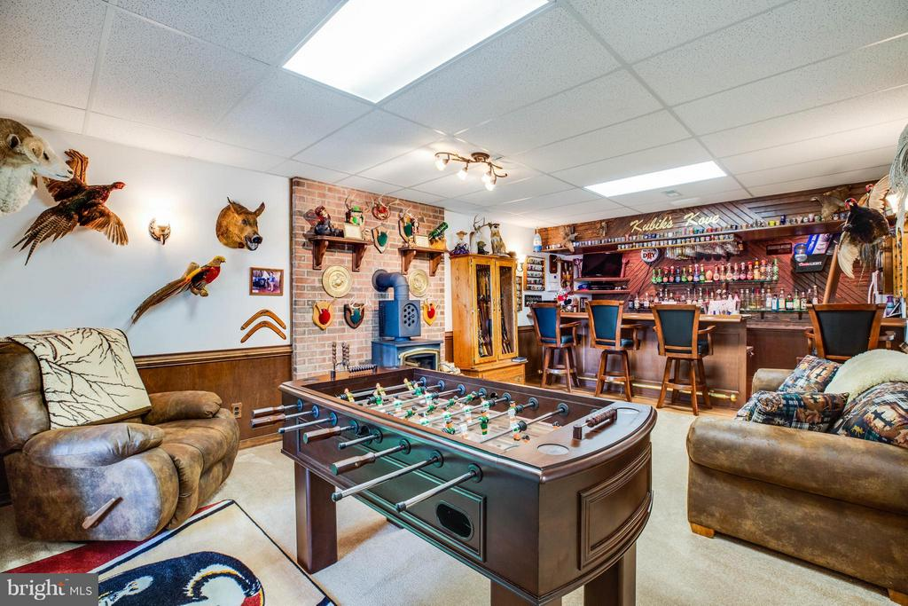 Games in Basement to Convey! - 3725 BREAKNOCK RD, BUMPASS
